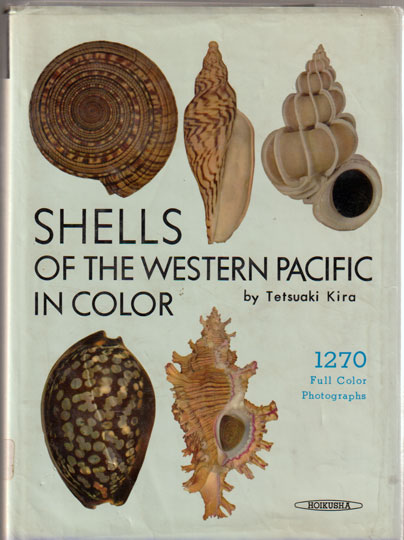 Shells of the Western Pacific In Color