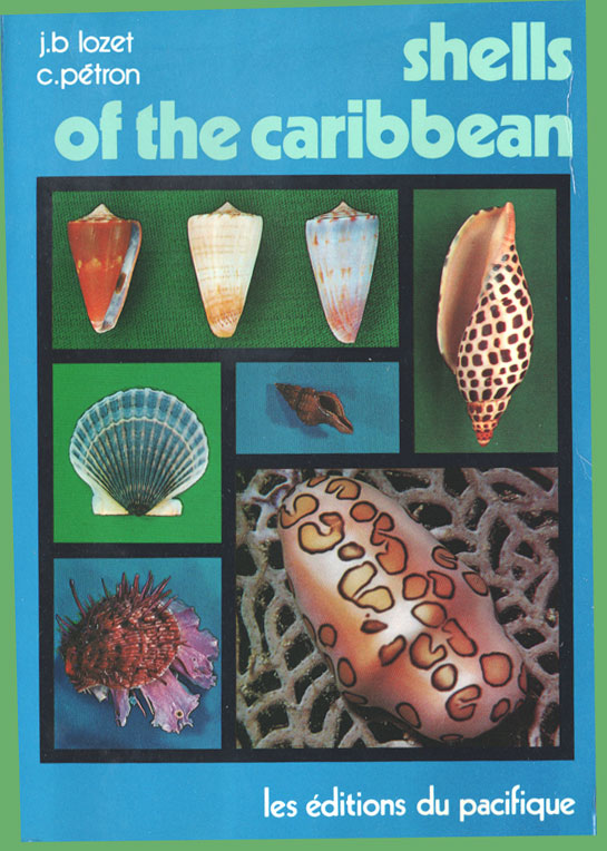 Shells of the Caribbean