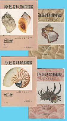 Shells of the World in Colour - 2 Volume set