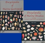 Encyclopedia of Marine Molluks   2 Vol. Set