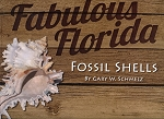 Fabulous Florida Fossil Shells