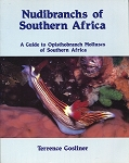 Nudibranchs of Southern Africa