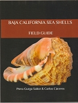 Baja California Sea Shells Field Guide