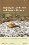 Identifying Land Snails and Slugs in Canada