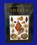 Classic Natural History Prints - Shells