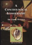 The Family Tonnidae - A Conchological Iconography  # 13