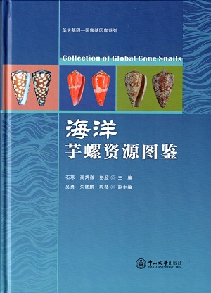 Collection of Global Cone Snails