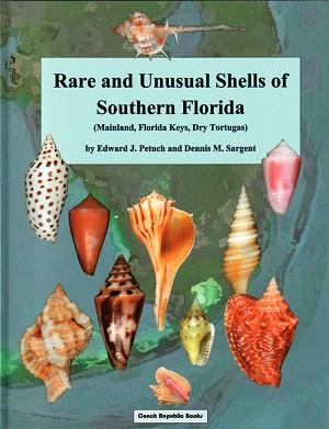 Rare & Unusual Shells of Southern Florida