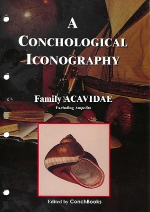 Family Acavidae excluding the Genus Ampelita - A Conchological Iconography #7
