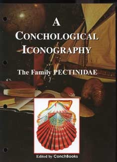 The Family Pectinidae - A Conchological Iconography #12